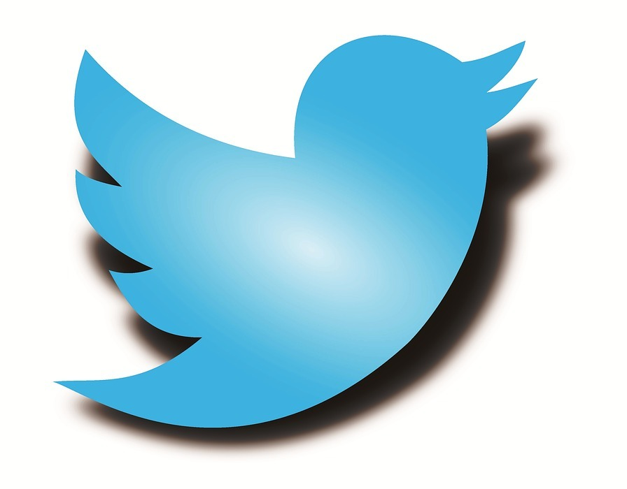 twitter logo, twitter bird, twitter shadow bird