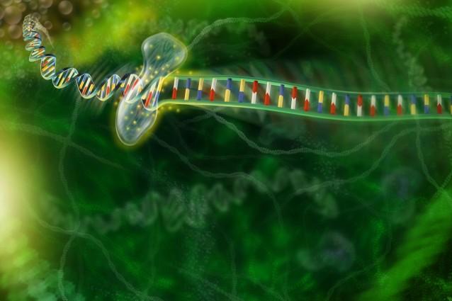 Dalla biologia uscirà la prossima scoperta del secolo?