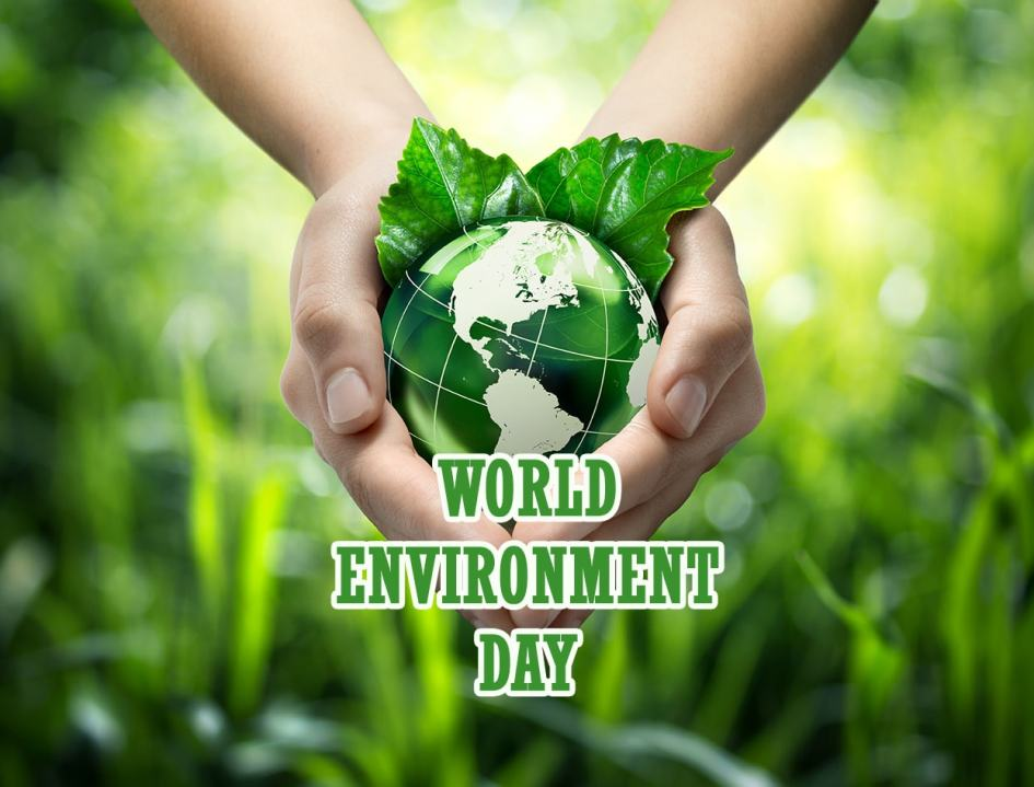 Image result for world environment day 2018