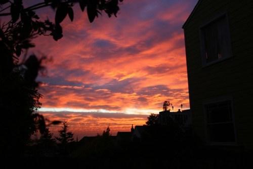 Noe Valley Dawn