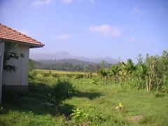 Brahmagiri 037