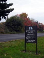 Bienvenue à Cornell