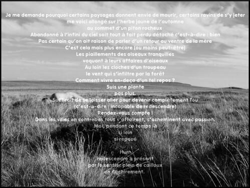 dana hilliot - untitled (Alleuze)