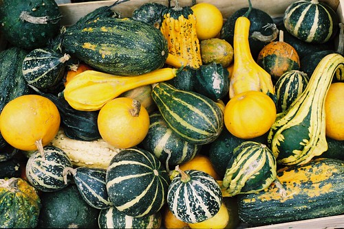 Squash at Vic Market
