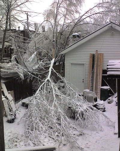 Winter storm in St. Louis damage