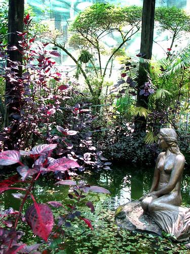 The Mermaid Pond @ Camp John Hay