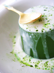 Macha Pudding