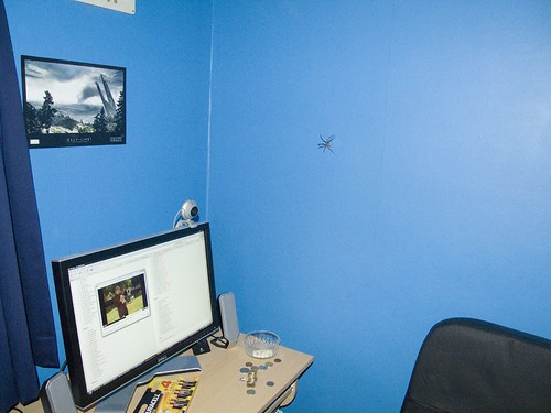 Huge Spider (by Godlesswanderer)