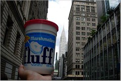 Fluff and the Chrysler Building