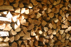 fall woodpile