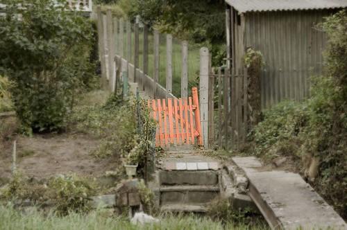 Rood hekje