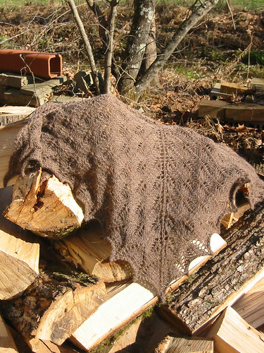 shawl on logs