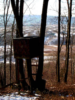 tree stand with Sinking Valley view