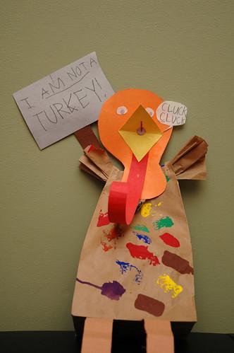 Not a turkey