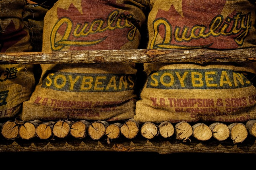 Quality Soy Beans