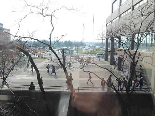 Beautiful day at the University at Buffalo