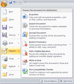 MS Office 2007 Toolbar