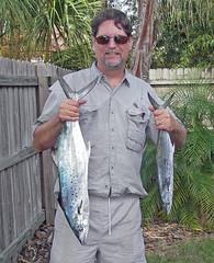 mackerel3051