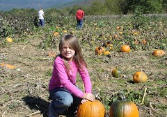 Stinkerbell and pumpkins