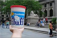 Fluff NY public library