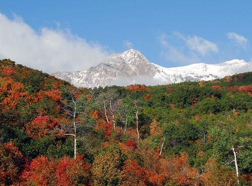 Mt Ogden-Trappers Loop - 09172006-02