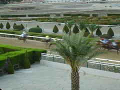 Coleur locale - Racetrack