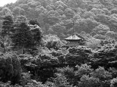 An old pagoda