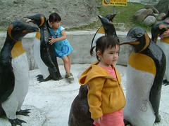 P-p-p-p-p-p-pick up a penguin