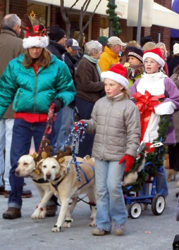 (c) Hilltown Families (Reindog Parade)