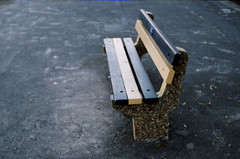 Bench (by Steve Crane)