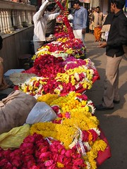 vrindavan flower market (by kapsi)