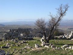 View From St. Simeon Cathedral Ruins