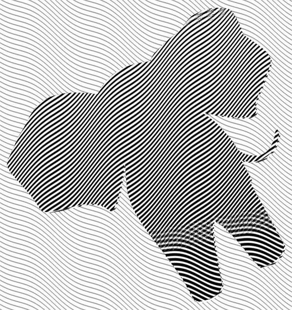 logo-xylo.jpg