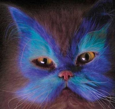 painted_cats_001