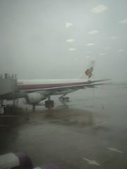 01.泰航的A300-600