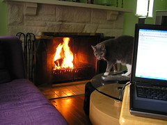 Laptop in living room by fireplace