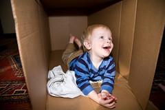 20071014_CardboardBox-2