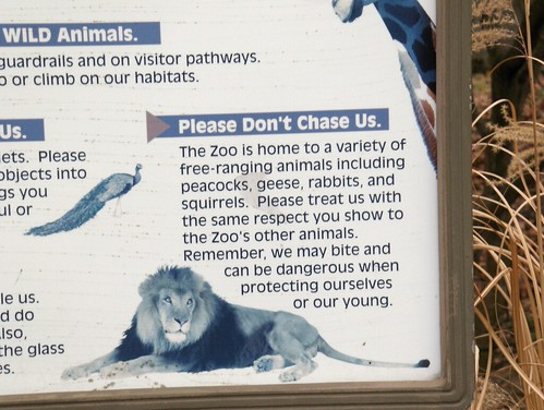 Det Zoo 123007_0070