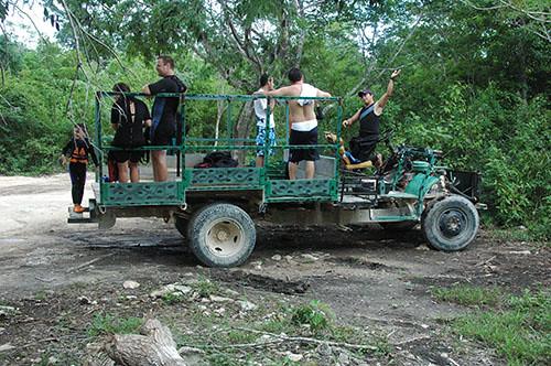 01 Amazing Jungle Car