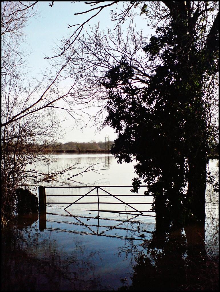 Loddon flooding