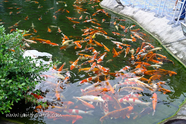 Fantasea Phuket-4