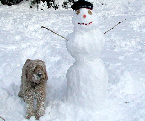 biscuit and snowman
