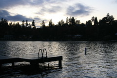 Down by the water in Bellevue