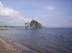 Punta Blanca Beach