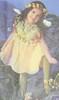 hall woodland fairy