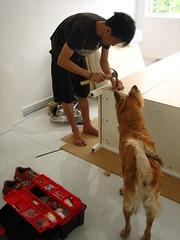 wardrobe installation