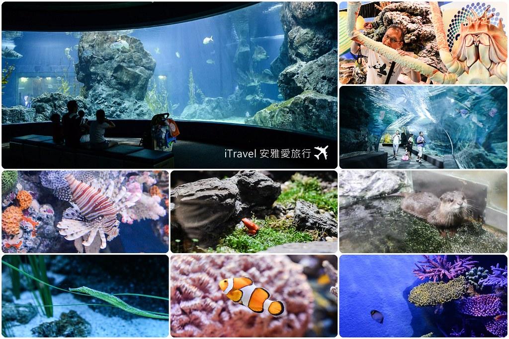 Siam Ocean World Bangkok 01