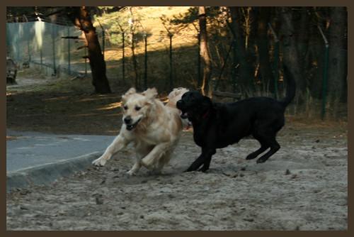 Eiko chasing Valéas