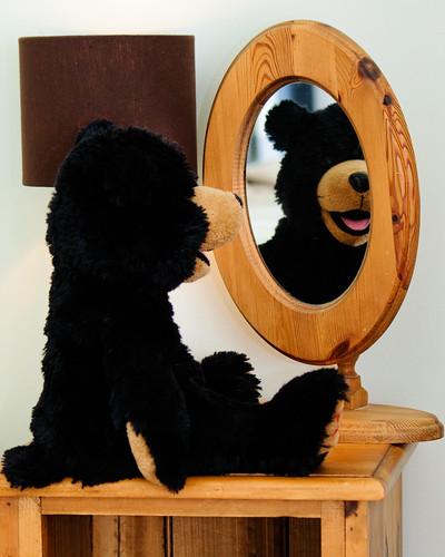 08/365 Mirror, mirror