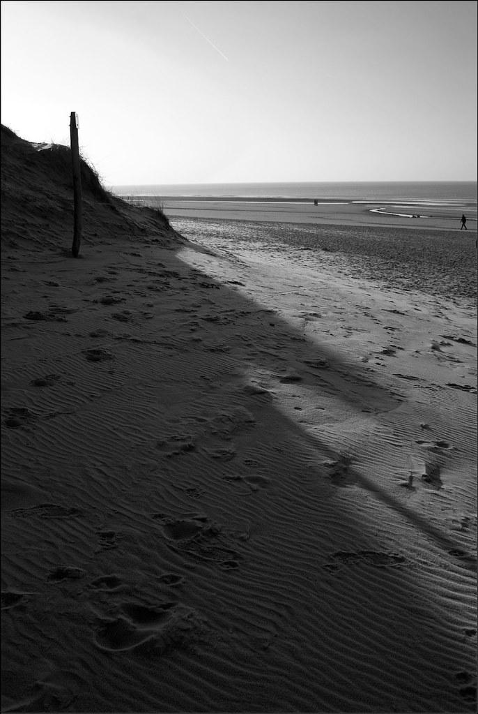 Dunes, Bergen aan Zee